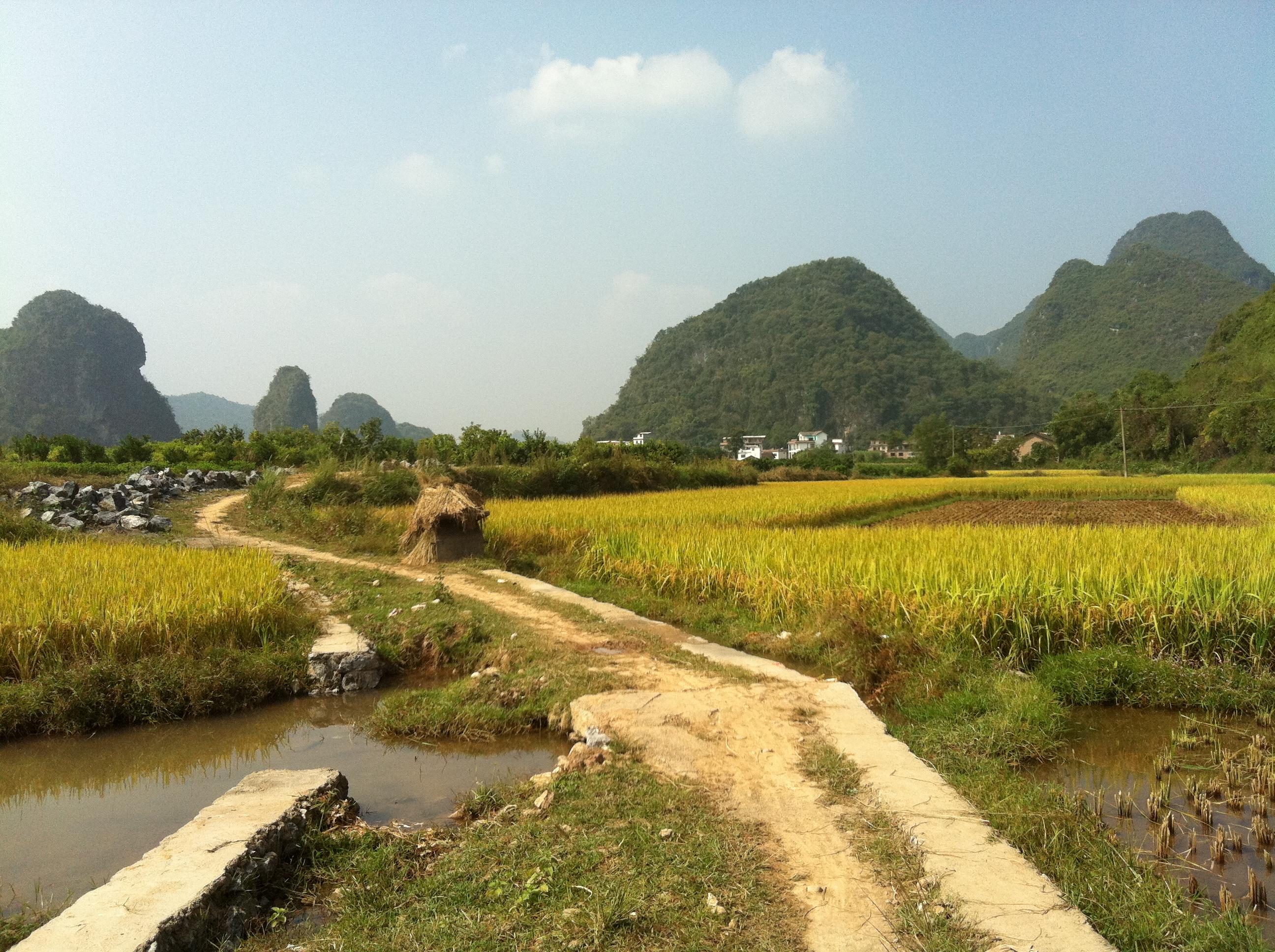 Yanghuo - encore